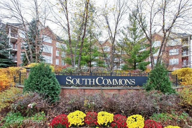 640 Robert York Avenue #207, Deerfield, IL 60015 (MLS #10131062) :: Ani Real Estate