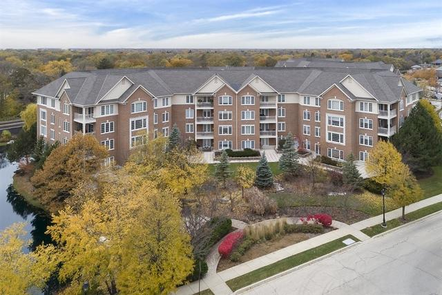 610 Robert York Avenue #101, Deerfield, IL 60015 (MLS #10131520) :: Ani Real Estate