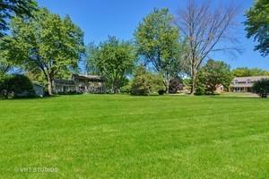5S351 Columbia Street, Naperville, IL 60563 (MLS #10133968) :: Ani Real Estate
