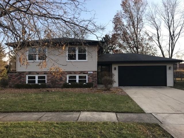 9935 Avenida Del Norte Street, Orland Park, IL 60462 (MLS #10134547) :: Ani Real Estate