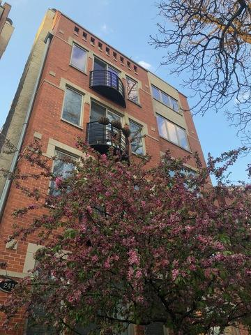 2418 W Moffat Street #4, Chicago, IL 60647 (MLS #10134759) :: John Lyons Real Estate