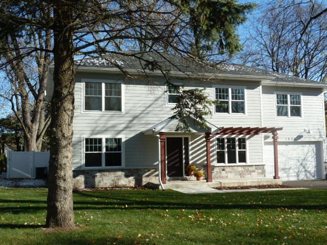 1430 N Webster Street, Naperville, IL 60563 (MLS #10134819) :: Ani Real Estate