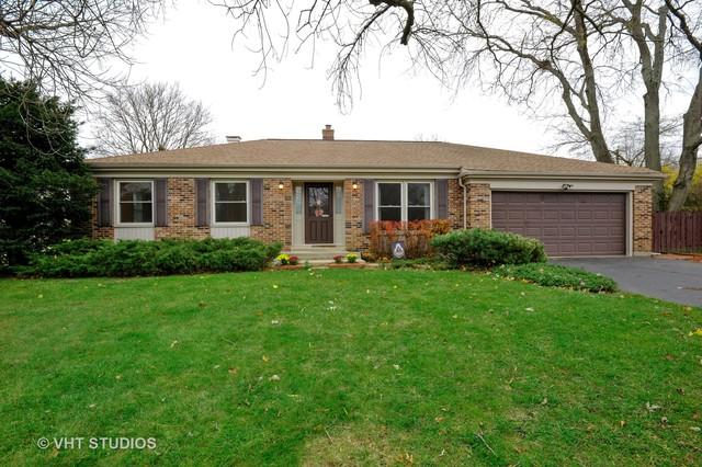 335 N Delany Road, Gurnee, IL 60031 (MLS #10135456) :: Domain Realty
