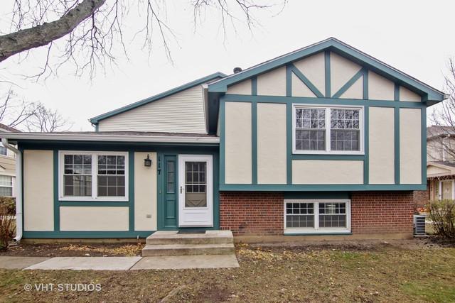 117 Lindenwood Court #117, Vernon Hills, IL 60061 (MLS #10138967) :: Helen Oliveri Real Estate
