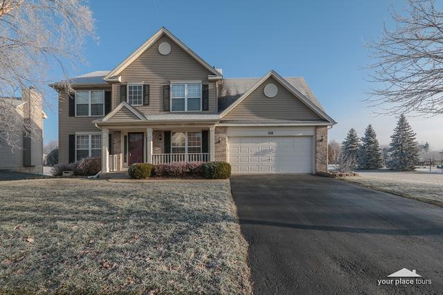 228 Parkside Lane, Oswego, IL 60543 (MLS #10140529) :: John Lyons Real Estate