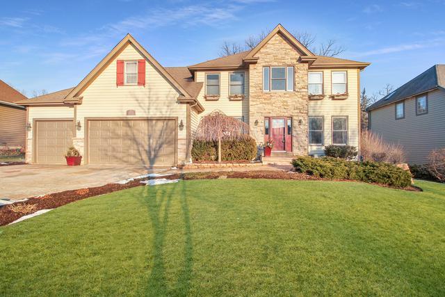 10815 Christopher Drive, Lemont, IL 60439 (MLS #10147509) :: Baz Realty Network | Keller Williams Preferred Realty