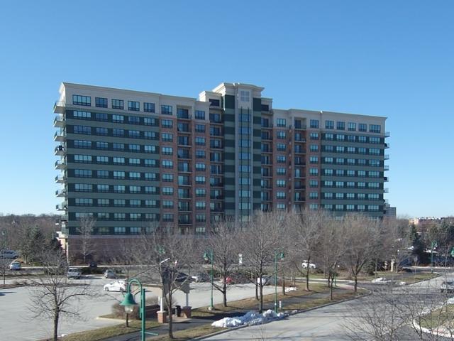 6420 Double Eagle Drive #1204, Woodridge, IL 60517 (MLS #10147675) :: Baz Realty Network   Keller Williams Preferred Realty