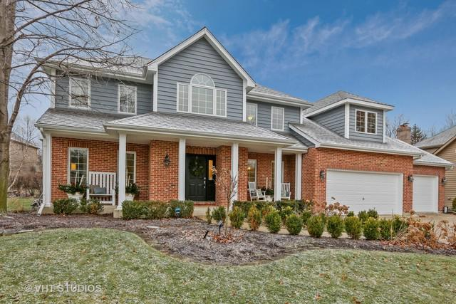 919 Mortonsberry Drive, Naperville, IL 60540 (MLS #10149116) :: Baz Realty Network   Keller Williams Preferred Realty