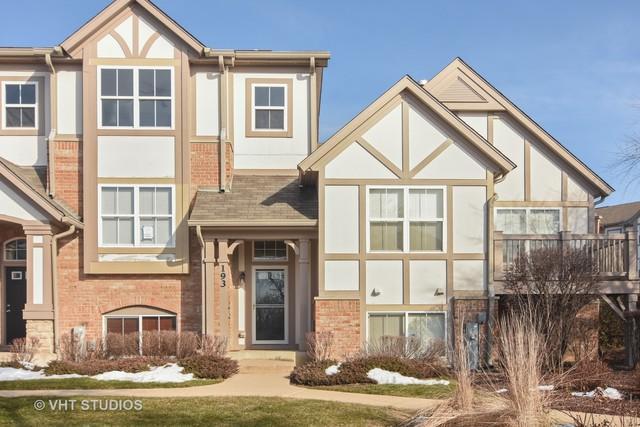 193 Rosehall Drive, Lake Zurich, IL 60047 (MLS #10153349) :: Helen Oliveri Real Estate
