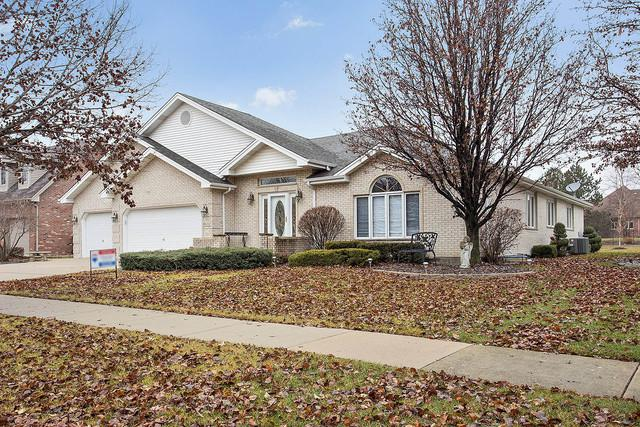 8112 W Mallow Drive, Tinley Park, IL 60477 (MLS #10155378) :: Domain Realty
