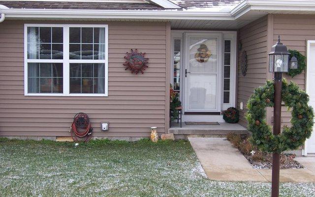 211 Medinah Court, Fisher, IL 61843 (MLS #10157077) :: Ryan Dallas Real Estate