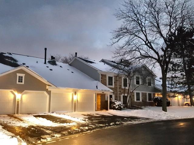 1115 Auburn Lane #0, Buffalo Grove, IL 60089 (MLS #10161741) :: Baz Realty Network | Keller Williams Preferred Realty