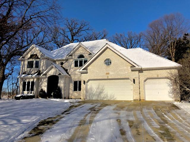 107 Trappers Court, Naperville, IL 60565 (MLS #10167980) :: Baz Realty Network   Keller Williams Preferred Realty