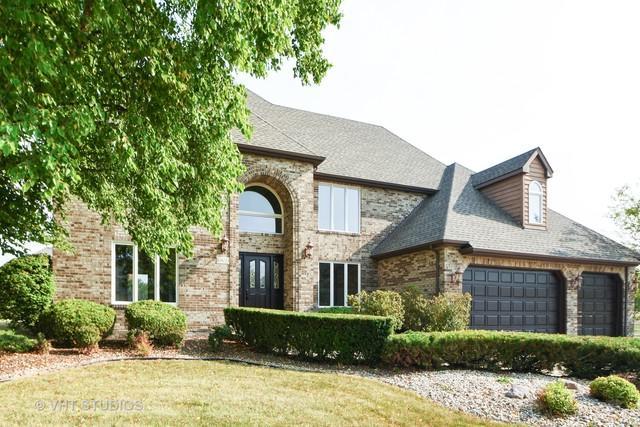 10653 Maue Drive, Orland Park, IL 60467 (MLS #10170121) :: Ryan Dallas Real Estate
