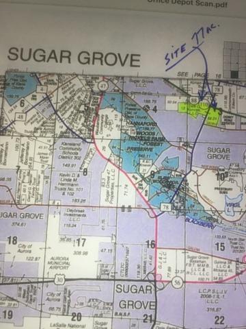 00 Bliss Road, Sugar Grove, IL 60554 (MLS #10170316) :: The Dena Furlow Team - Keller Williams Realty