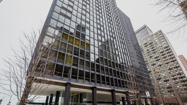 910 N Lake Shore Drive #616, Chicago, IL 60611 (MLS #10170651) :: Domain Realty