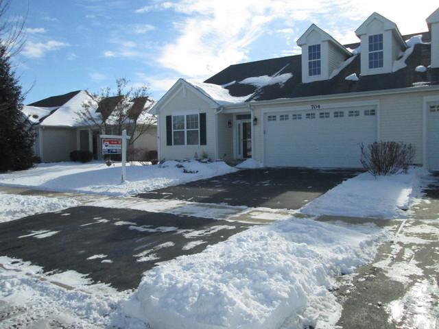 704 Bellevue Circle, Oswego, IL 60543 (MLS #10172943) :: Baz Realty Network | Keller Williams Preferred Realty