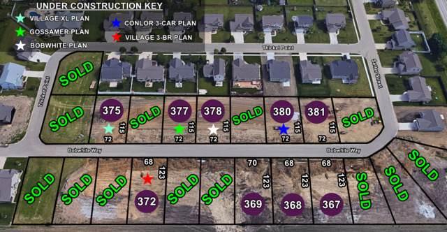 Lot 380 Bobwhite Way, Normal, IL 61761 (MLS #10247420) :: The Dena Furlow Team - Keller Williams Realty