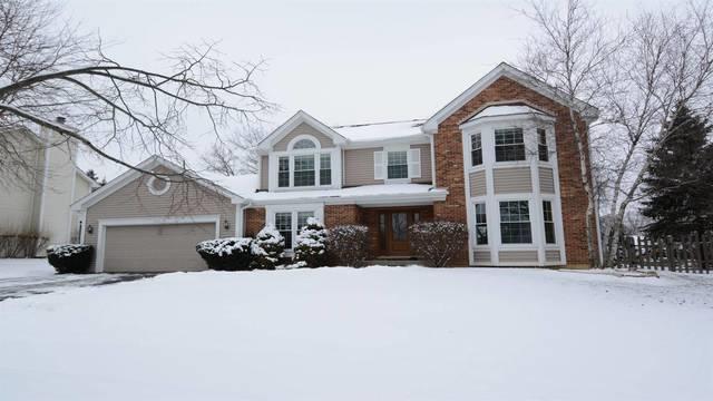 542 Carolian Drive, Lake Zurich, IL 60047 (MLS #10249903) :: Helen Oliveri Real Estate