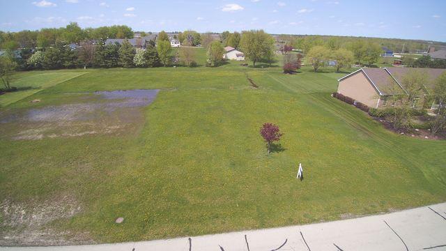 2811 Ninovan Lane, Minooka, IL 60447 (MLS #10250048) :: Property Consultants Realty