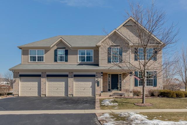489 Sandlewood Lane, Lake Villa, IL 60046 (MLS #10250137) :: Baz Realty Network   Keller Williams Preferred Realty