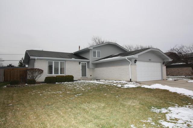 629 Gavin Avenue, Romeoville, IL 60446 (MLS #10252733) :: Helen Oliveri Real Estate
