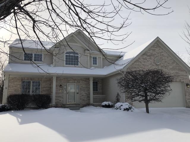 707 Sutton Court, Lake Villa, IL 60046 (MLS #10254130) :: Baz Realty Network | Keller Williams Preferred Realty