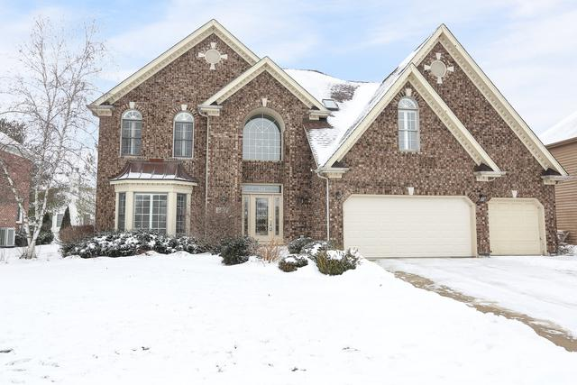 3303 Tall Grass Drive, Naperville, IL 60564 (MLS #10257079) :: Baz Realty Network | Keller Williams Preferred Realty