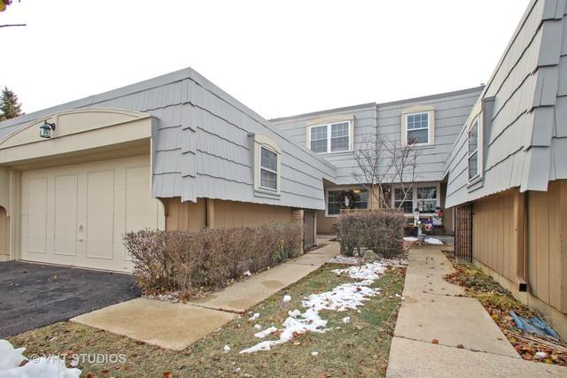 655 Versailles Circle G, Elk Grove Village, IL 60007 (MLS #10257248) :: Baz Realty Network | Keller Williams Preferred Realty