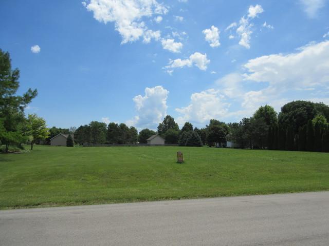 24725 S Walnut Street, Elwood, IL 60421 (MLS #10257823) :: Baz Realty Network | Keller Williams Elite