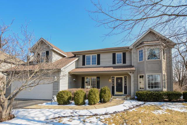 3720 Candeur Drive, Naperville, IL 60564 (MLS #10258840) :: Baz Realty Network | Keller Williams Preferred Realty