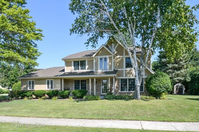 1106 Dawes Street, Libertyville, IL 60048 (MLS #10263711) :: Helen Oliveri Real Estate