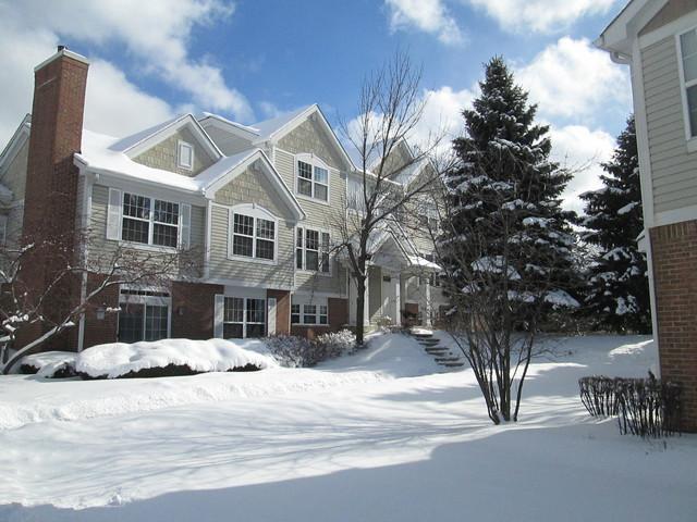 1238 Georgetown Way, Vernon Hills, IL 60061 (MLS #10264576) :: Baz Realty Network | Keller Williams Preferred Realty