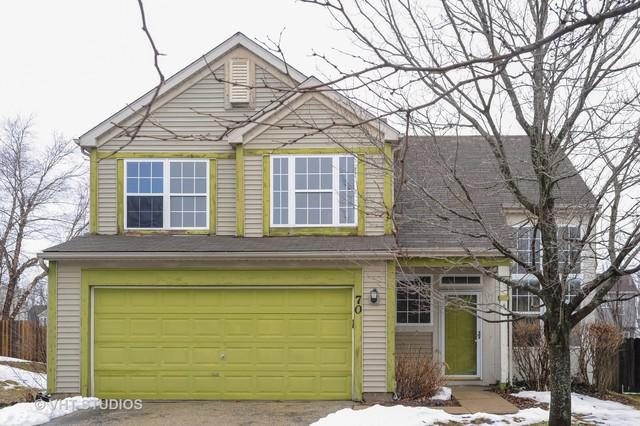 70 E Big Horn Drive, Hainesville, IL 60030 (MLS #10264594) :: Baz Realty Network | Keller Williams Preferred Realty