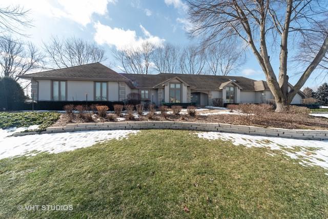 24349 W Old Oak Drive, Mundelein, IL 60060 (MLS #10264713) :: Baz Realty Network | Keller Williams Preferred Realty