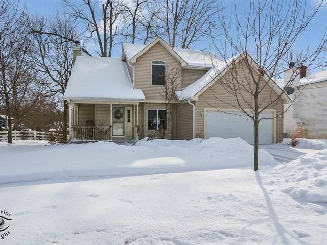 312 S Main Street, Oswego, IL 60543 (MLS #10264769) :: The Dena Furlow Team - Keller Williams Realty