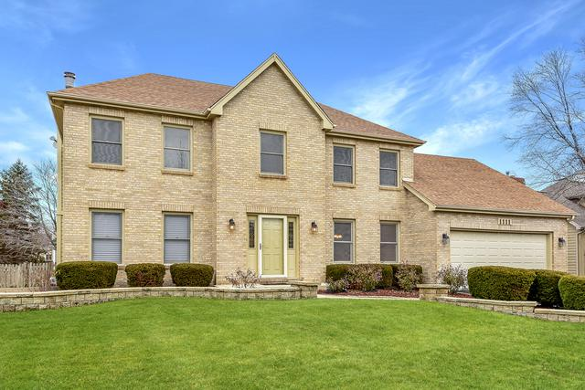 1111 Magenta Court, Naperville, IL 60564 (MLS #10265012) :: Baz Realty Network | Keller Williams Preferred Realty