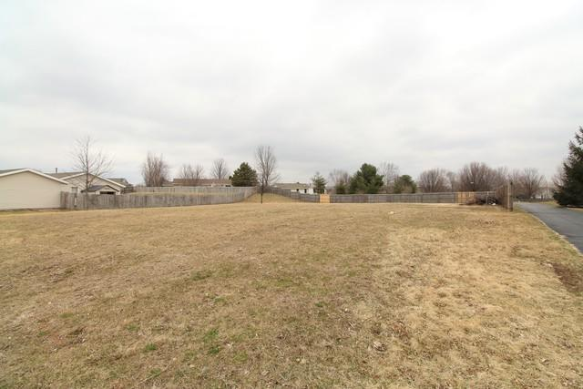 111 Sunny Hill Drive, Davis Junction, IL 61020 (MLS #10267380) :: Berkshire Hathaway HomeServices Snyder Real Estate