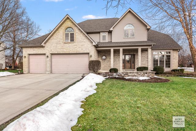 333 Ash Grove Lane, Oswego, IL 60543 (MLS #10268141) :: Baz Realty Network   Keller Williams Preferred Realty