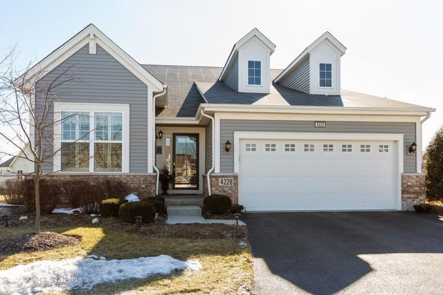 4228 Idlewild Lane, Naperville, IL 60564 (MLS #10269305) :: Baz Realty Network   Keller Williams Preferred Realty