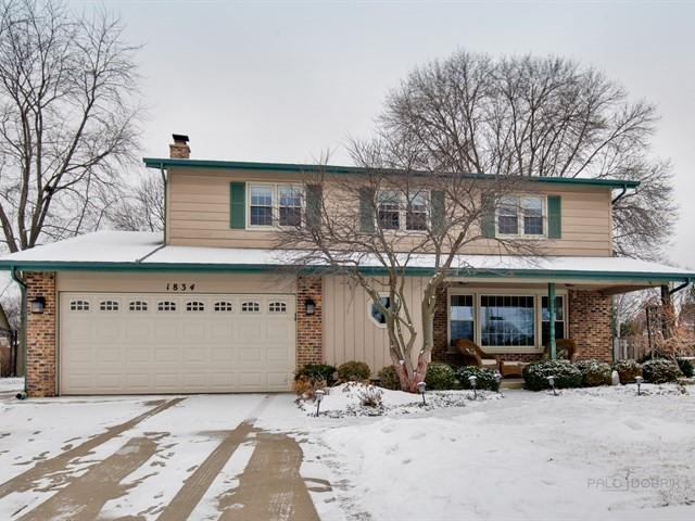 1834 N Dale Avenue, Arlington Heights, IL 60004 (MLS #10270393) :: Century 21 Affiliated
