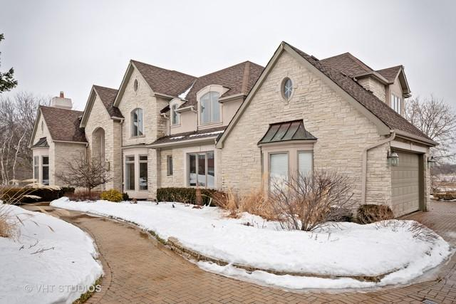 8 York Lake Court, Oak Brook, IL 60523 (MLS #10270469) :: Baz Realty Network   Keller Williams Preferred Realty