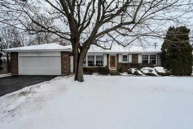 761 Blackburn Street, Gurnee, IL 60031 (MLS #10270977) :: Baz Realty Network | Keller Williams Preferred Realty