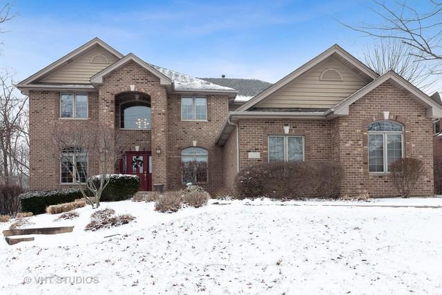 16220 Ridgewood Drive, Homer Glen, IL 60491 (MLS #10271938) :: Baz Realty Network   Keller Williams Preferred Realty