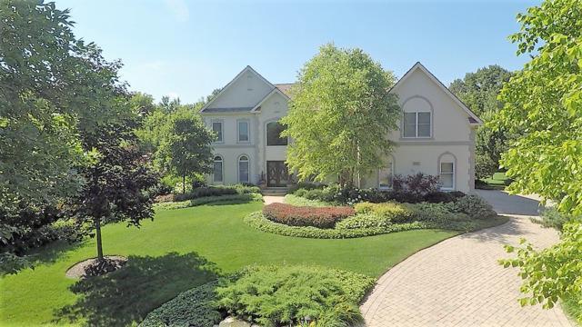 4837 Wilderness Court, Long Grove, IL 60047 (MLS #10274161) :: Helen Oliveri Real Estate