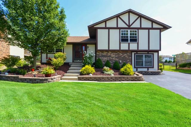 20721 S Acorn Ridge Drive, Frankfort, IL 60423 (MLS #10274532) :: Baz Realty Network | Keller Williams Preferred Realty