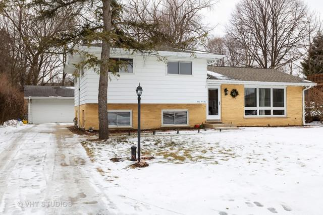 906 S Summit Street, Barrington, IL 60010 (MLS #10275467) :: The Mattz Mega Group