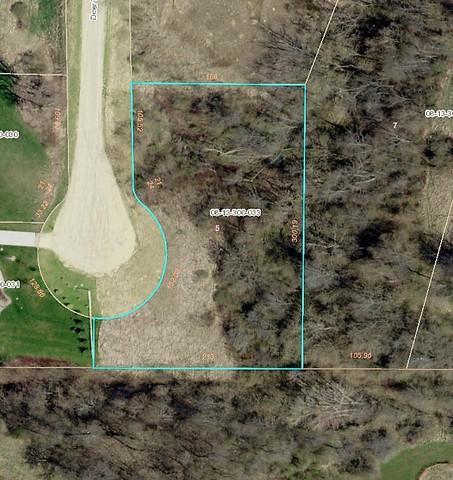 Lot 5 Deer Trace Court, Morrison, IL 61270 (MLS #10277892) :: The Mattz Mega Group