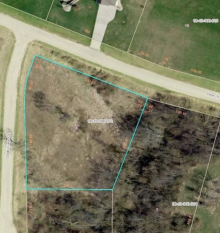 Lot 6 Deer Trace Drive, Morrison, IL 61270 (MLS #10277906) :: The Mattz Mega Group