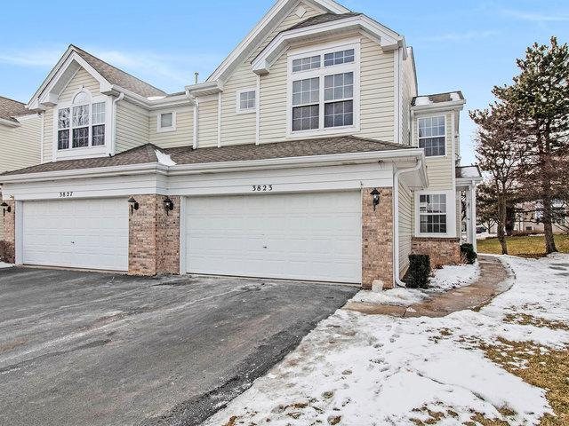 3823 Petra Court, Naperville, IL 60564 (MLS #10279460) :: Baz Realty Network | Keller Williams Preferred Realty
